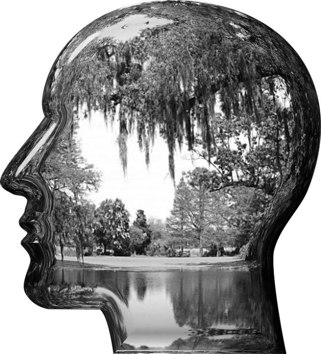 head-1745244_960_720