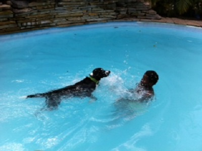 lilly swimming with francisca